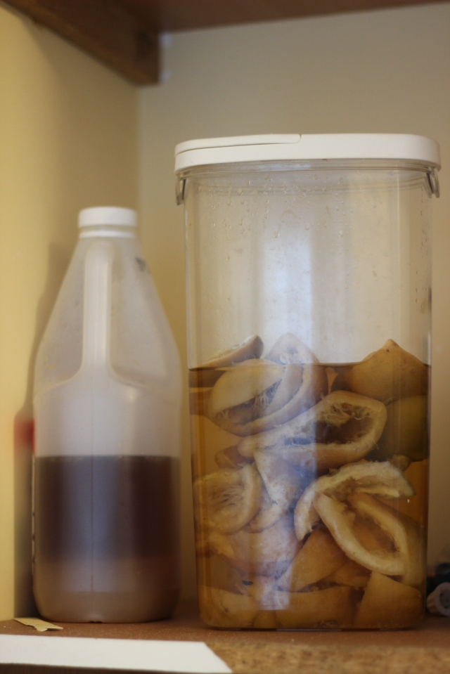 My DIY Citrus Vinegar